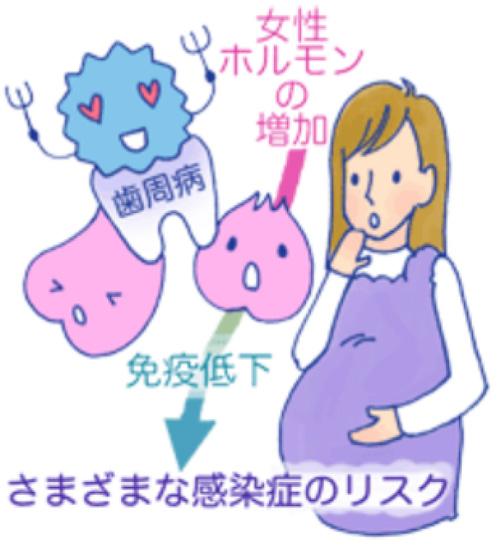 妊娠中のお口の中は