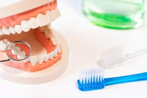 VOL.41 歯周組織再生療法とは